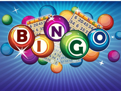 bingo-nuevo-online